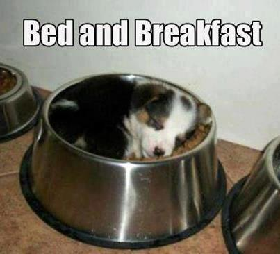 bedand bfast